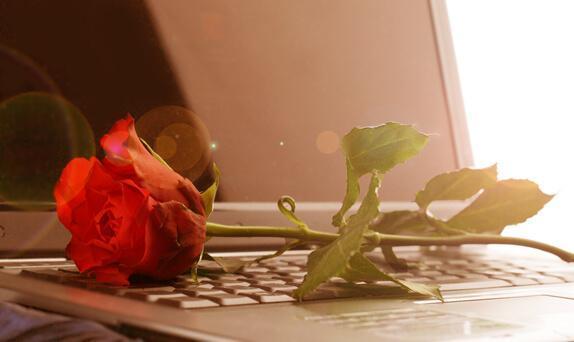 Betrug im Internet