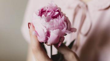 Sprache der Blume